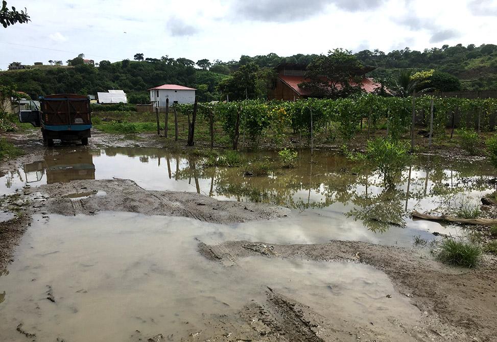 Maja Flooded